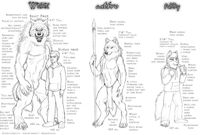 My Definitions by Goldenwolf.jpg