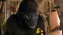 George-of-jungle-movie-still-4.png