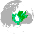 Polar bear range map.png