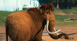 Ellie ICE AGE 2.png